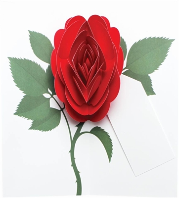 Red rose (6 cards + envelopes + tag)