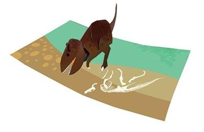 Tyrannosaurus (6 ex - 4,25 per stuk)
