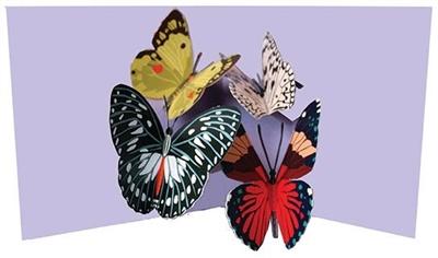 Four butterflies (6 ex - 4,25 per stuk)