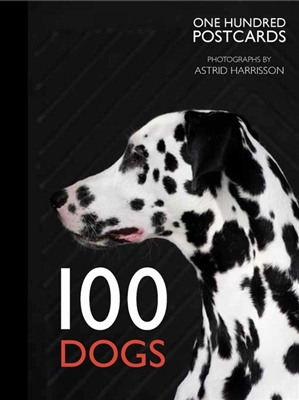 100 dogs in a box: 100 postcards