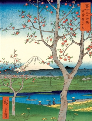 Japanese views - utagawa hiroshige