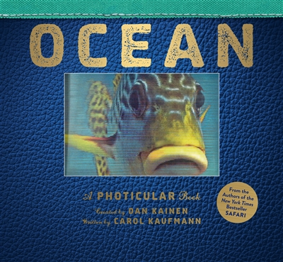 Ocean - a photicular book