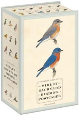 Sibley backyard birding postcards : 100 postcards