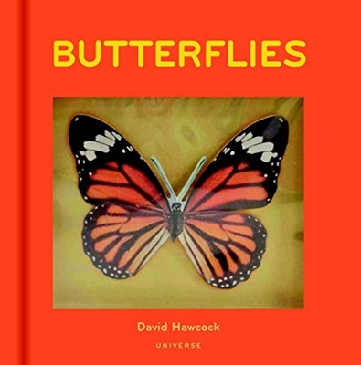 Butterflies pop-up