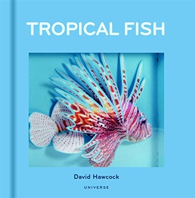 Tropical fish pop-up