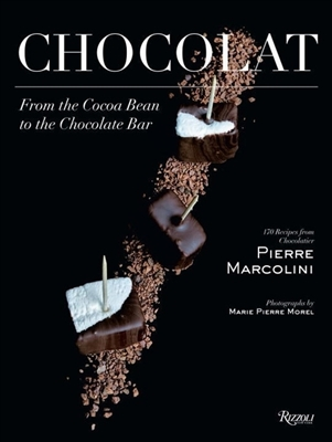 Chocolat : from the cocoa bean to the chocolate bar
