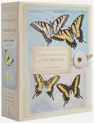Butterflies of titian ramsay peale 32 notecards