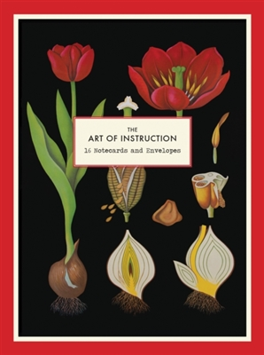 Art of instruction 16 notecard set