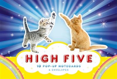 High five! : 10 pop-up notecards & envelopes