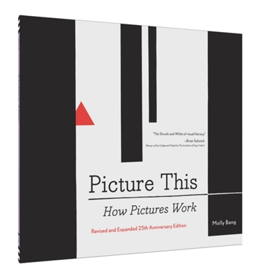 Picture this : how pictures work