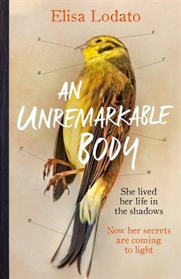 Unremarkable body