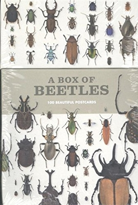 Box of beetles : 100 beautiful postcards