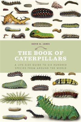 Book of caterpillars