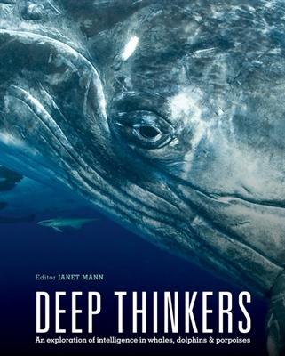 Deep thinkers
