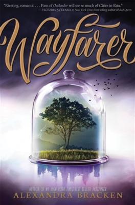 Passenger (02): wayfarer