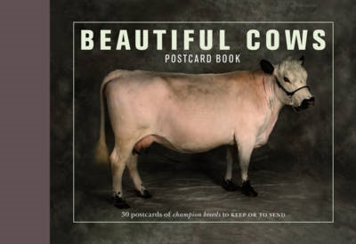 Beautiful cows 30 postcards book