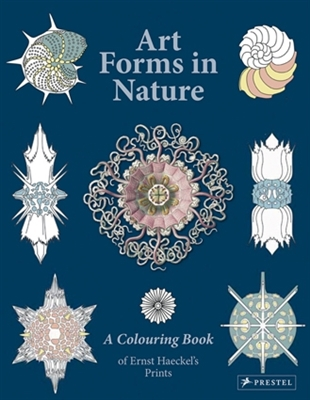 Art forms in nature : a colouring book of ernst haeckel's prints